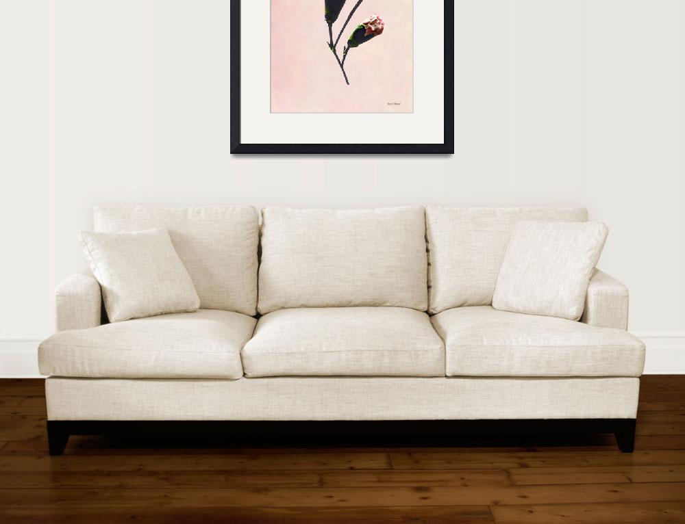 """""""Delicate Carnation Wtih Buds&quot  by susansartgallery"""