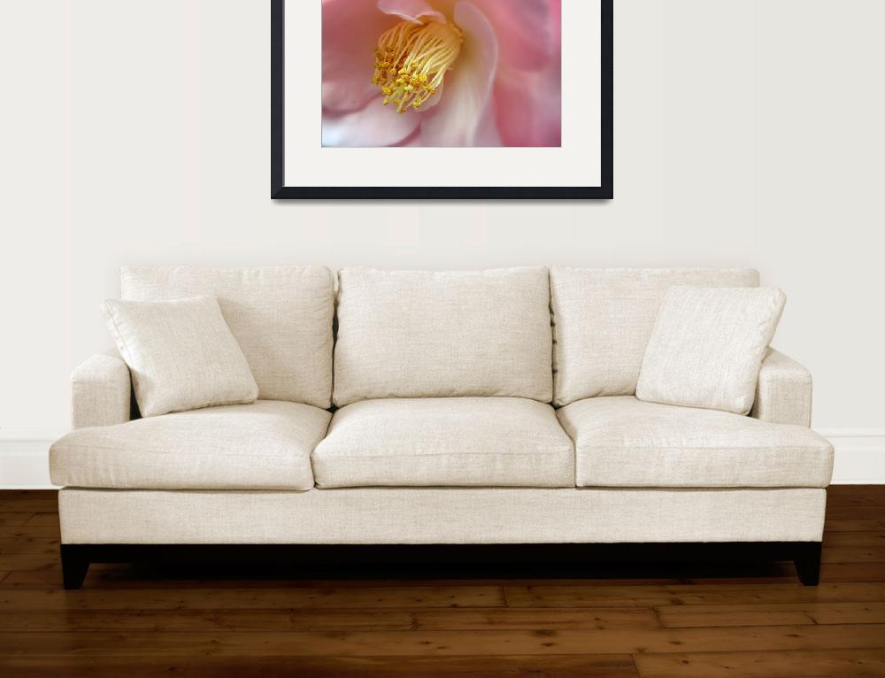 """""""Camellia&quot  (2011) by JessicaJenney"""