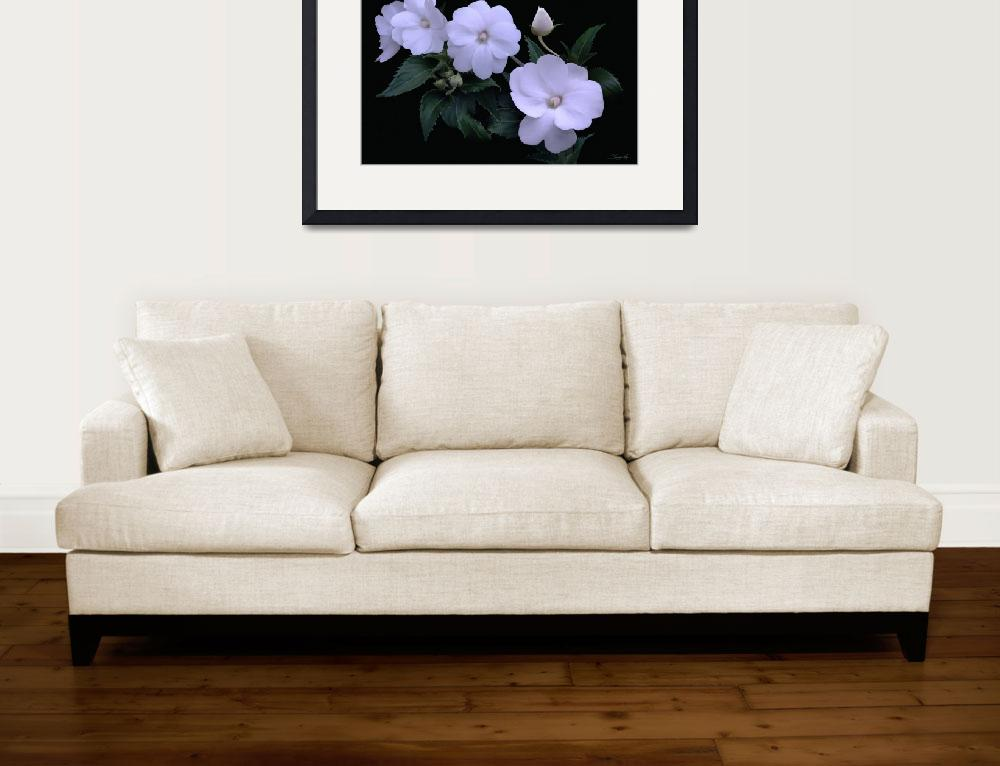 """""""White Impatiens&quot  (2017) by spadecaller"""