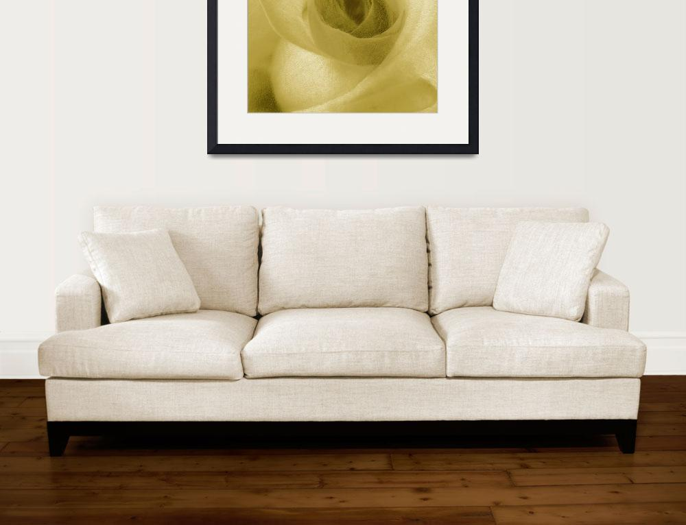 """""""Yellow Rose&quot  (2014) by RubinoFineArt"""