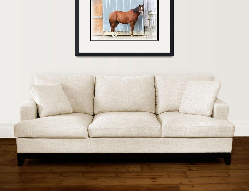 """""""Country western horse&quot  by sherryswest"""