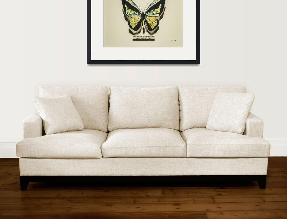 """Butterfly Ornithoptera goliath procus&quot  (2014) by CarlosSegui"