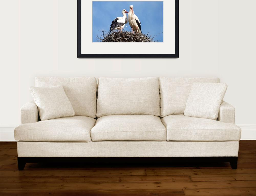 """""""storks&quot  (2014) by gallerymay"""