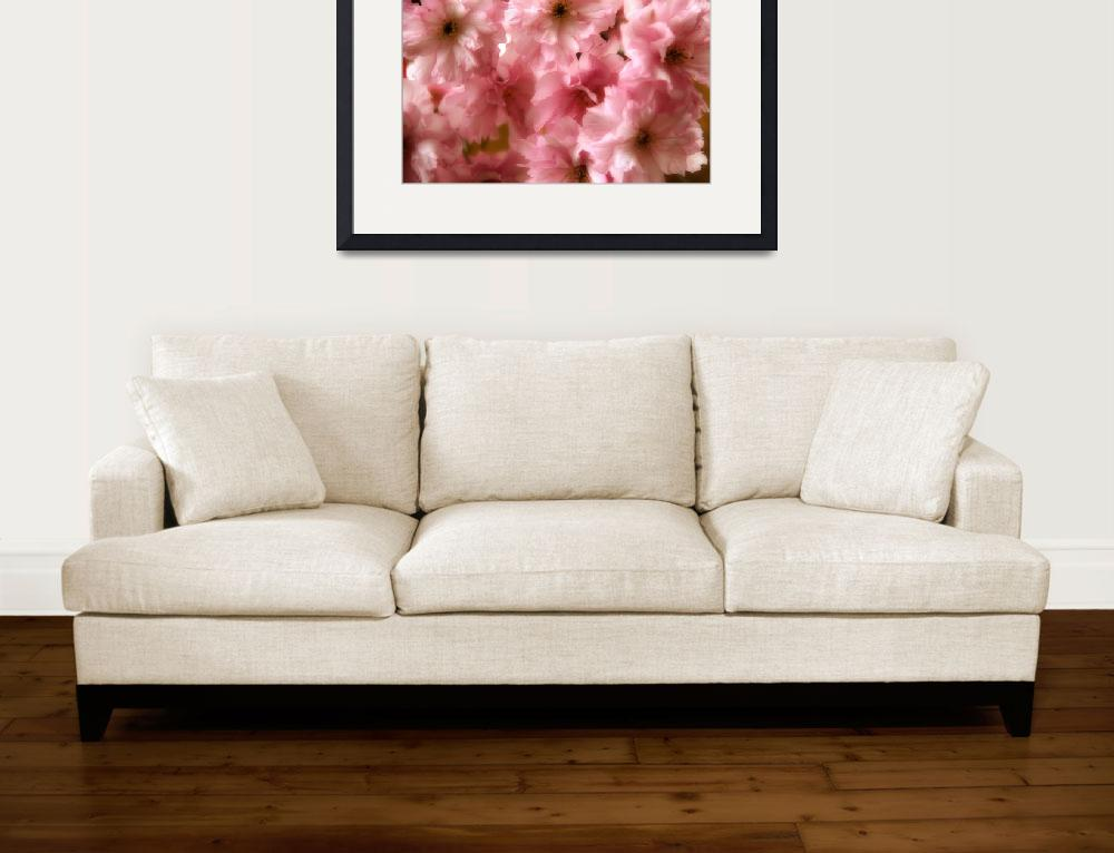"""""""Cherry Blossom Spring&quot  (2011) by AnnG"""