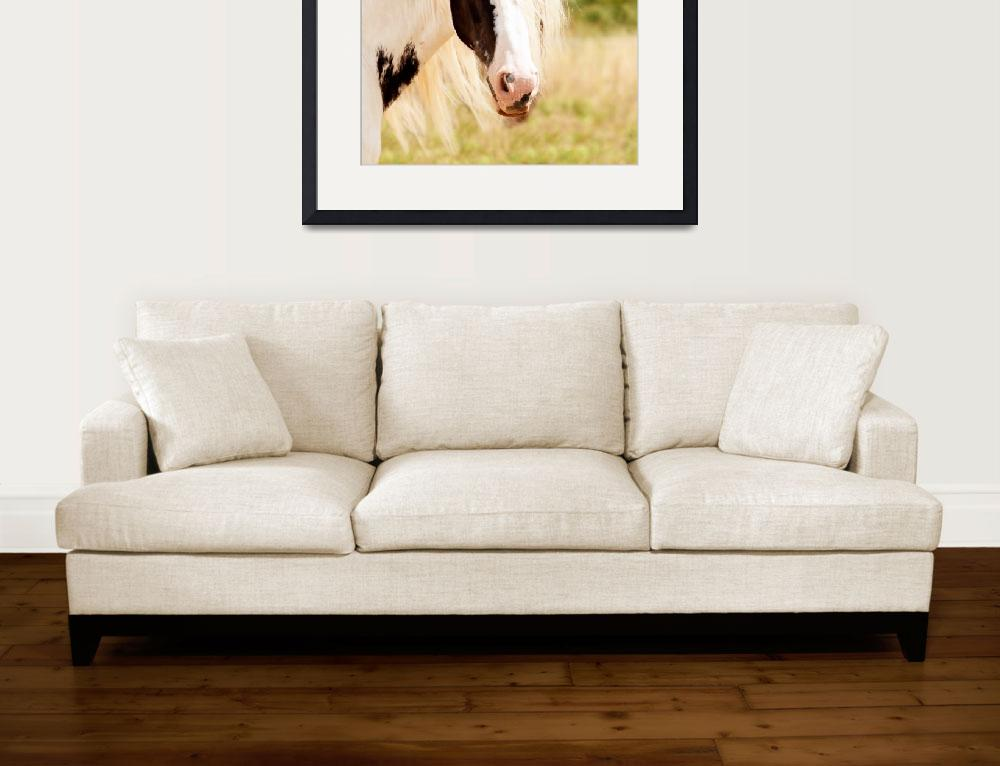 """""""White Brown Horse Animal Portrait&quot  (2016) by rogueart"""