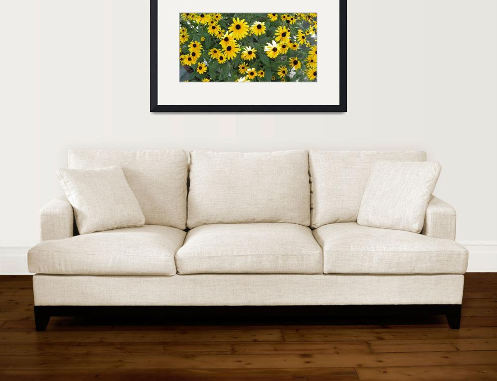 """""""yellow flowers 4""""  (2010) by sb1photography"""