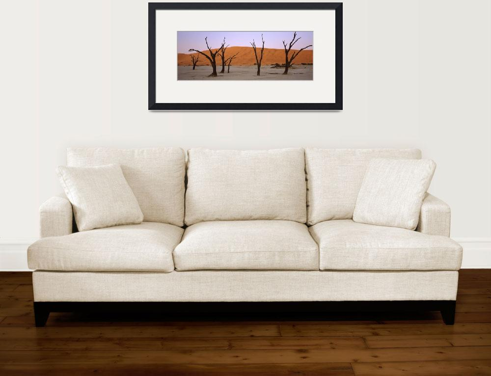 """""""Dead trees in a desert at sunrise Dead Vlei Sossu&quot  by Panoramic_Images"""