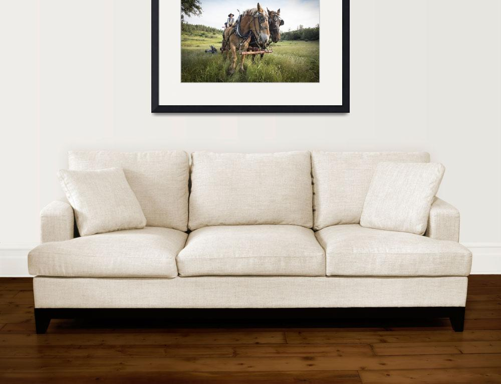 """""""Draft Horses and Wagon&quot  (2016) by SederquistPhotography"""