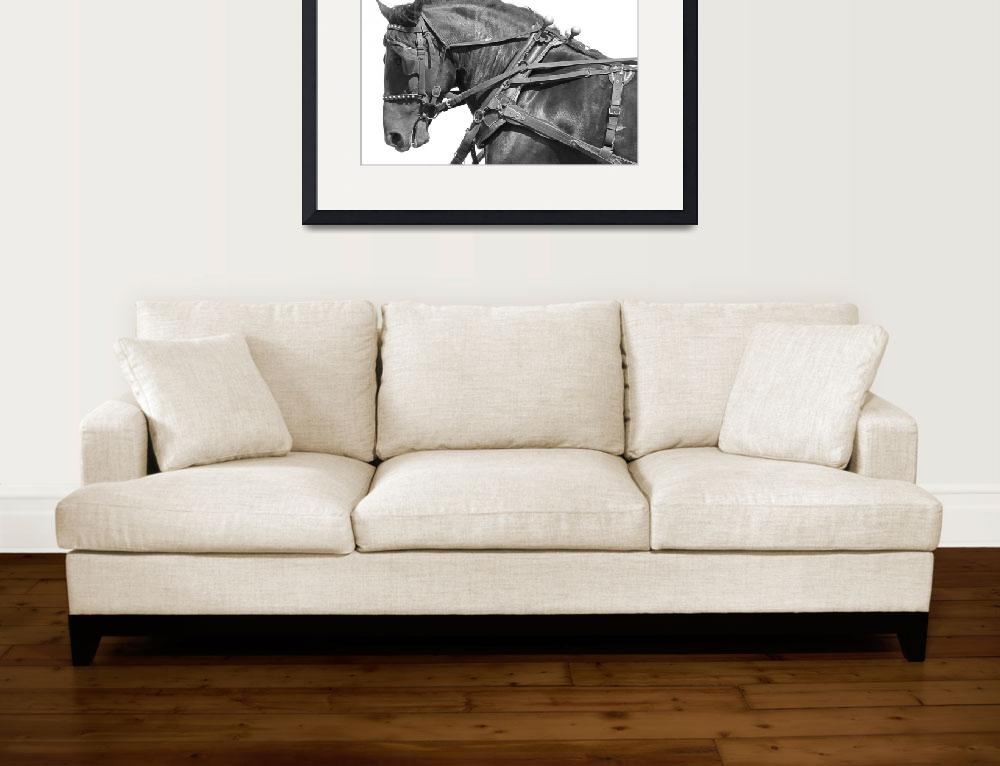 """""""Workhorse""""  (2009) by Dullinger"""