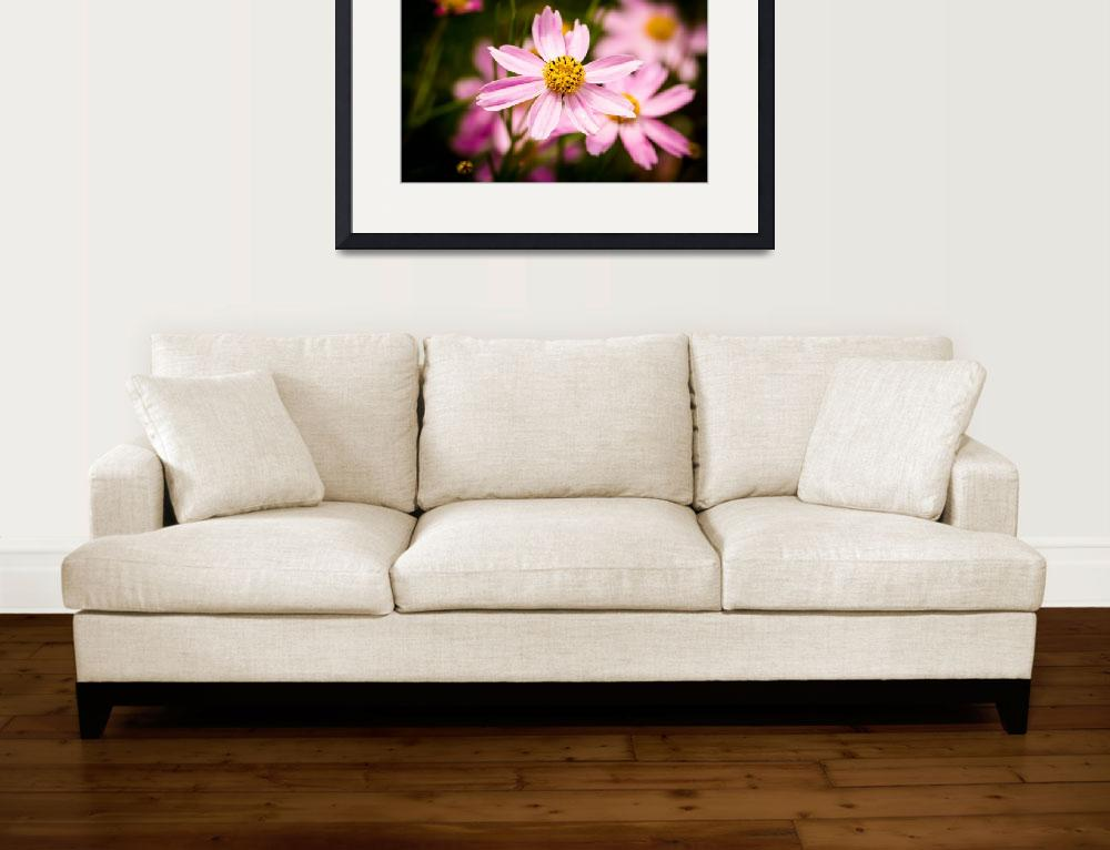 """""""Pink Coneflowers&quot  (2014) by AlexButler"""