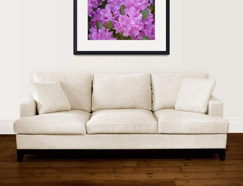 """""""rhodedendron&quot  (2008) by JenHansonDesigns"""