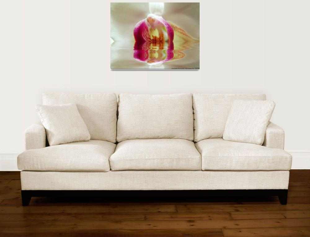 """""""Liquid Orchid&quot  (2009) by awhoward"""