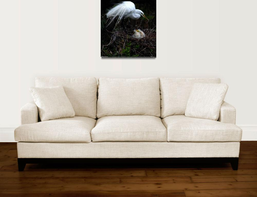 """""""Egret With Chicks""""  (2009) by photonjon"""