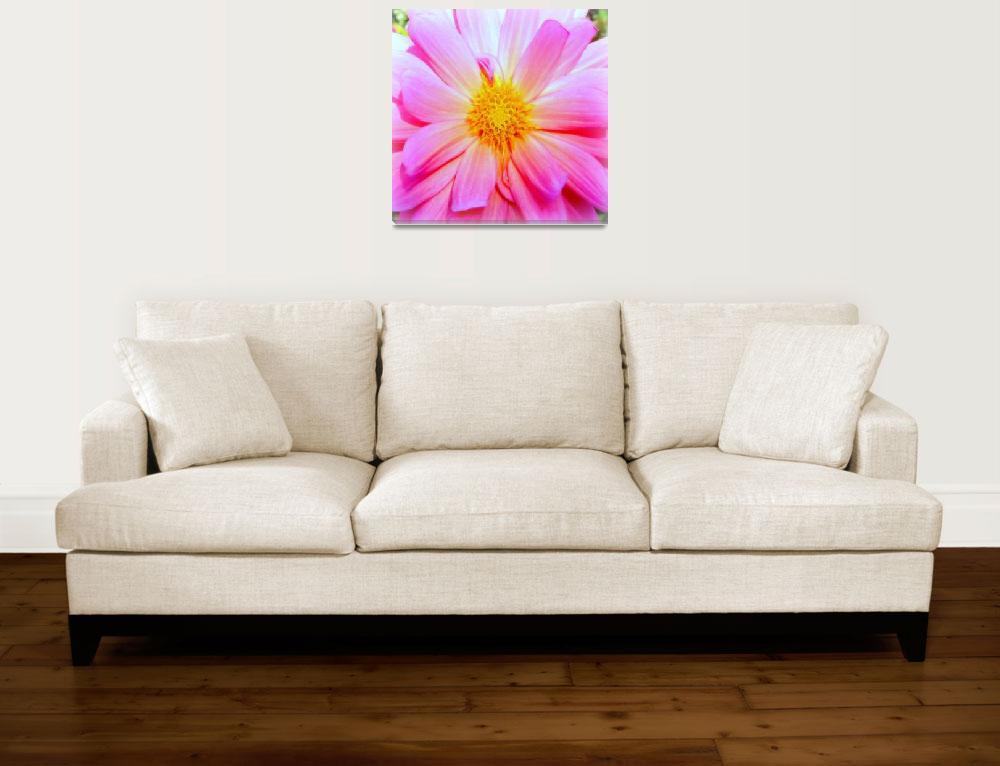 """Pink Flower macro""  (2009) by micspics444"