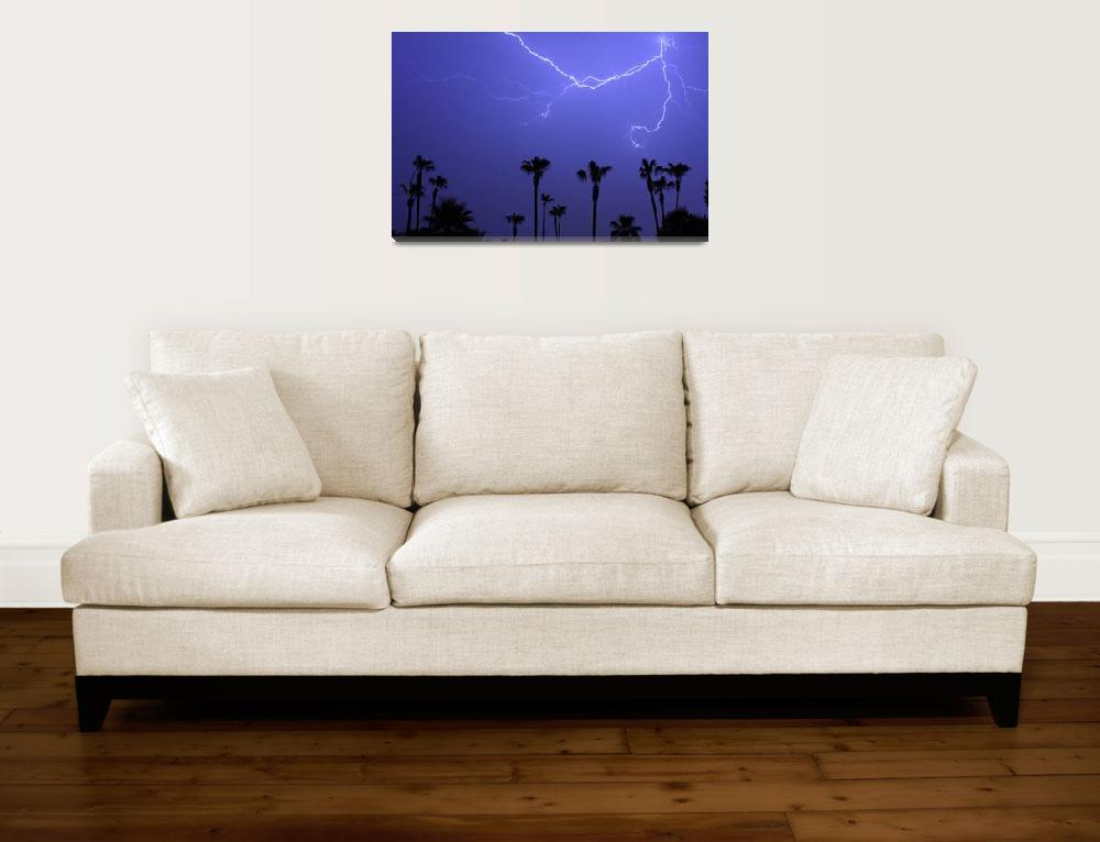 """13 Palms""  (2008) by lightningman"
