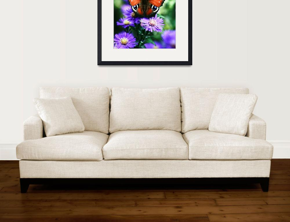 """""""The Butterfly with purple flowers&quot  (2006) by JohnEmmaneel"""