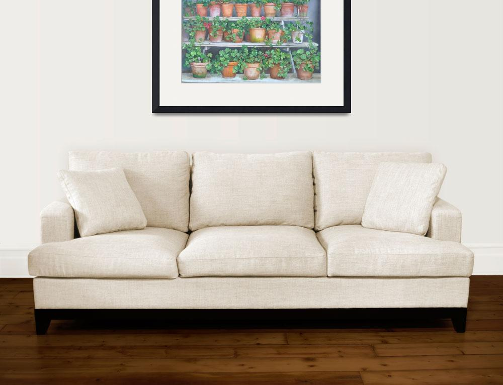 """""""Geraniums&quot  (2011) by robertmeredith"""