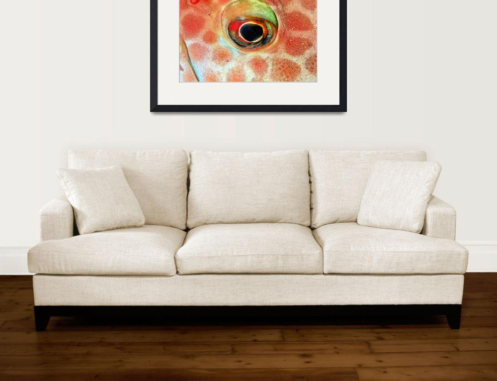 """""""Eye, Groupper&quot  (2001) by JoaoPonces"""