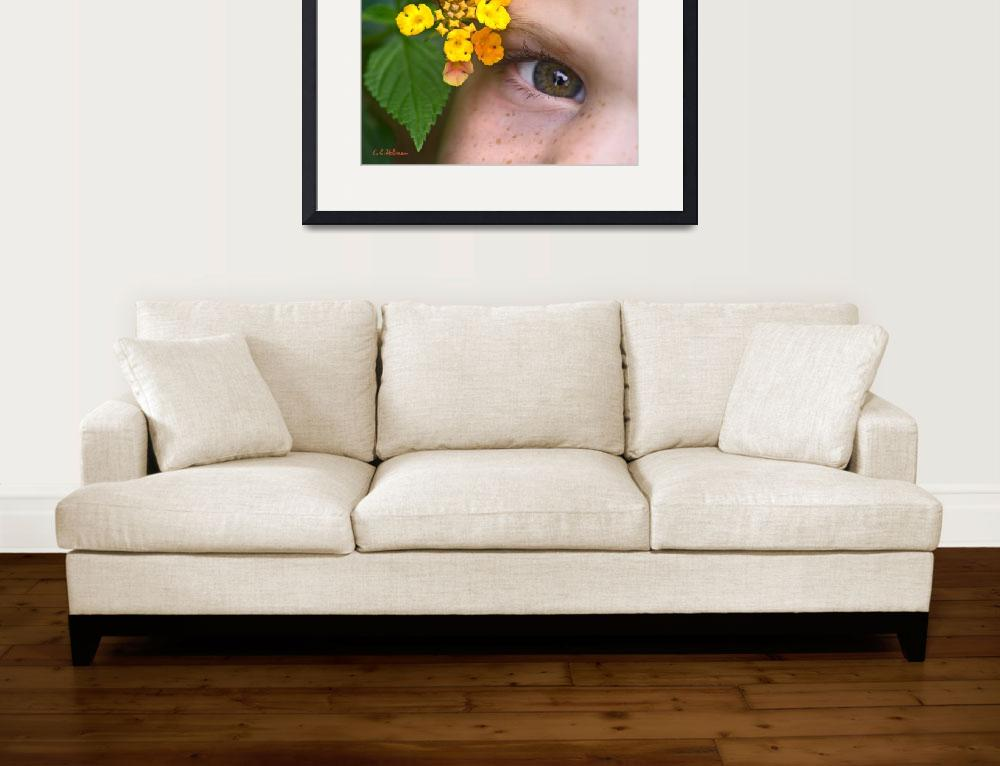 """An Eye For Flowers&quot  (2007) by OcularPerceptions"