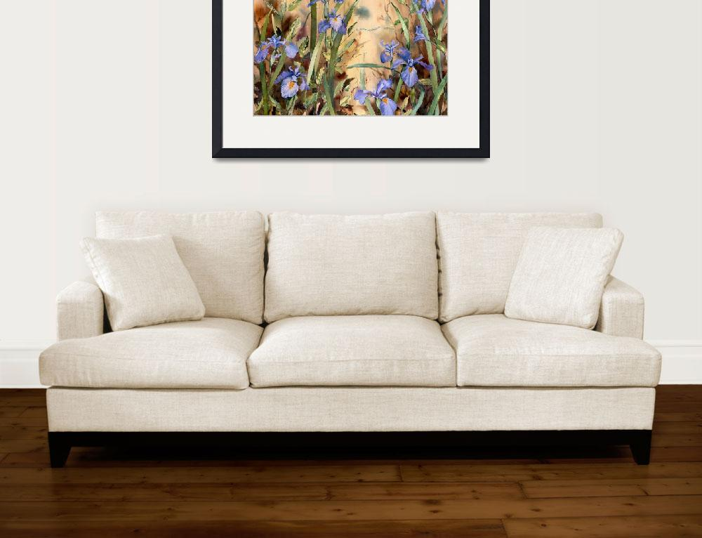 """Riverside Wild Iris&quot  (2008) by Sharon_himes"