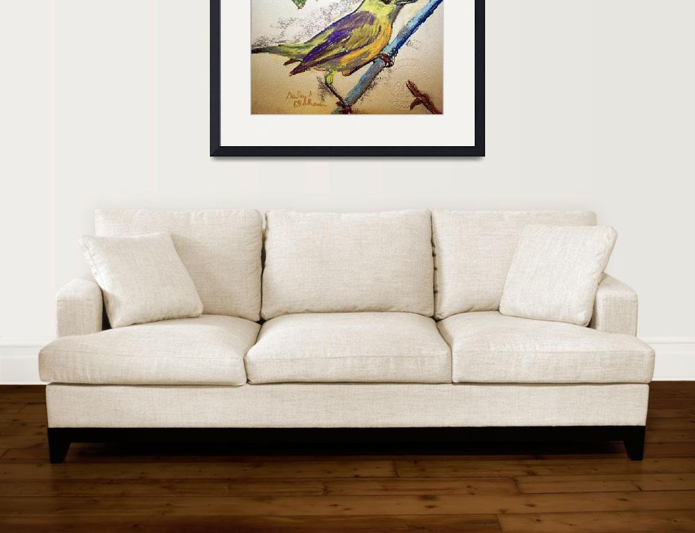 """111811 Yellow Warbler&quot  (2011) by garlandoldham"