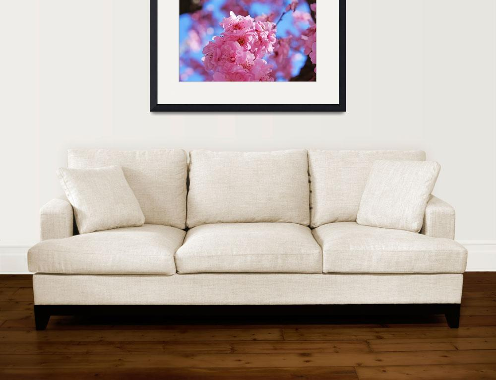 """""""Blossoms Pink Art Prints Flowers Spring Trees""""  (2014) by BasleeTroutman"""