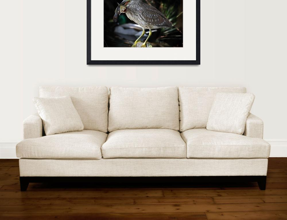 """Heron Eating Catfish""  (2006) by digitalmedia"