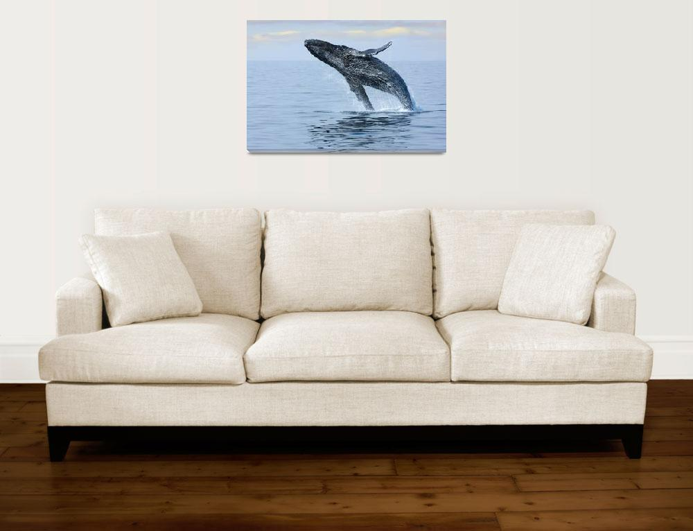 """""""Hump Back Whale&quot  (2015) by SueLeonard"""