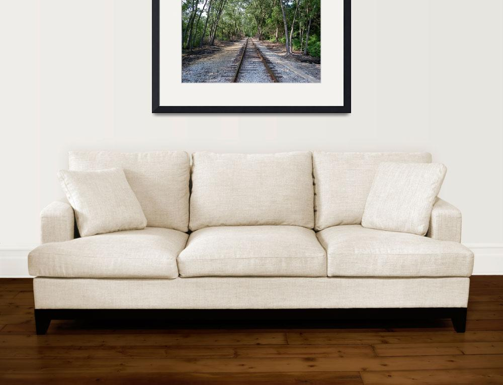 """""""Old Abandoned Shady Tracks&quot  (2010) by catnip009"""