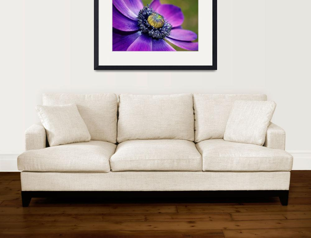 """""""Positively Purple&quot  (2011) by KjWorthing"""