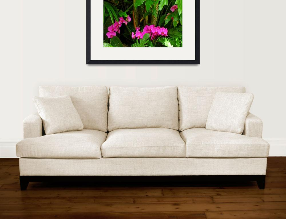 """""""Phalaenopsis orchids&quot  (2012) by joeyartist"""