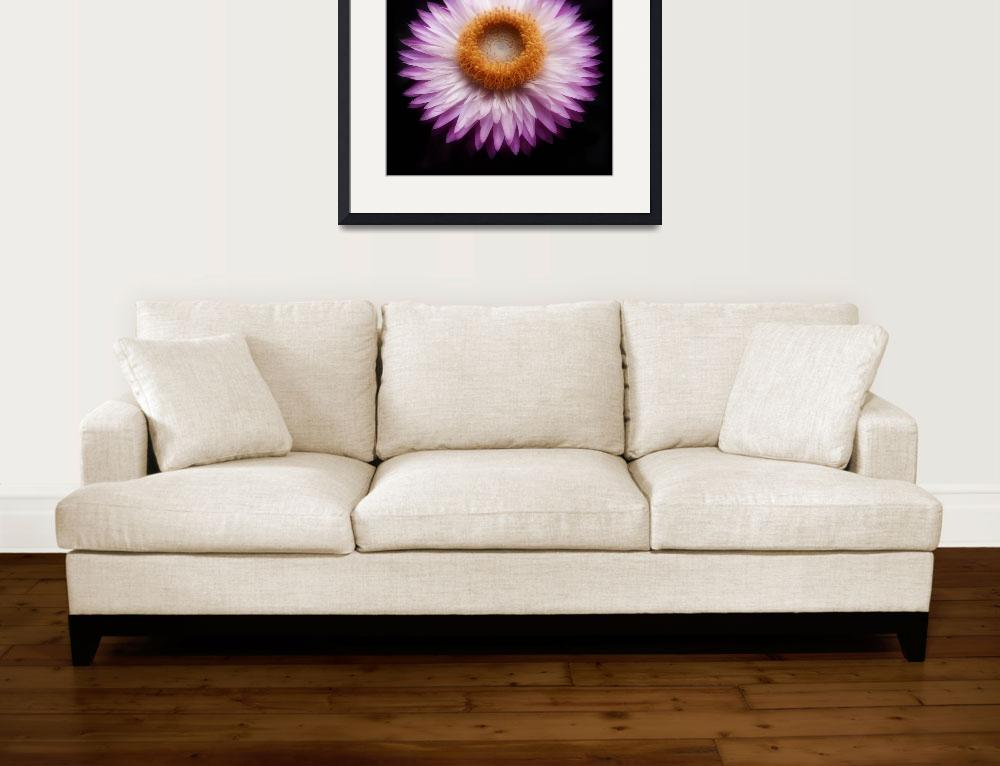 """""""Crown Chakra Flower&quot  (2010) by fizzyimages"""