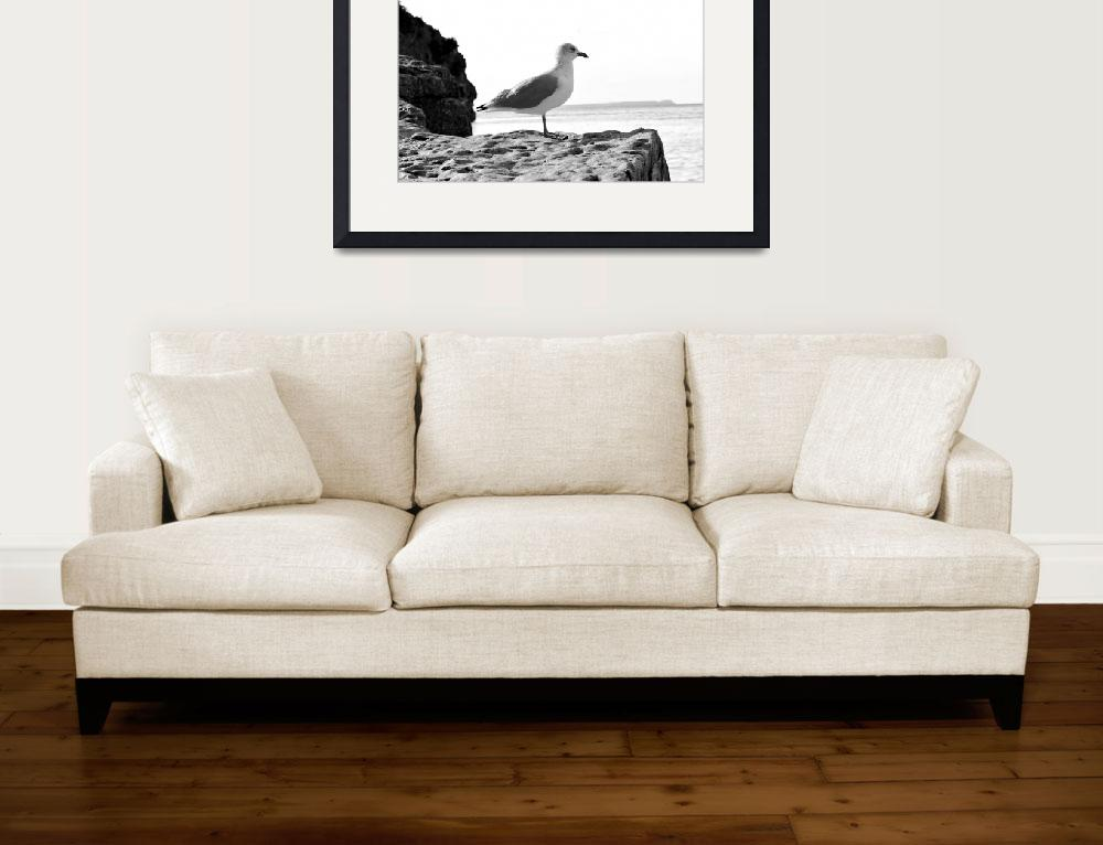 """""""Bird at the lake&quot  (2016) by mariemedeirosphotography"""