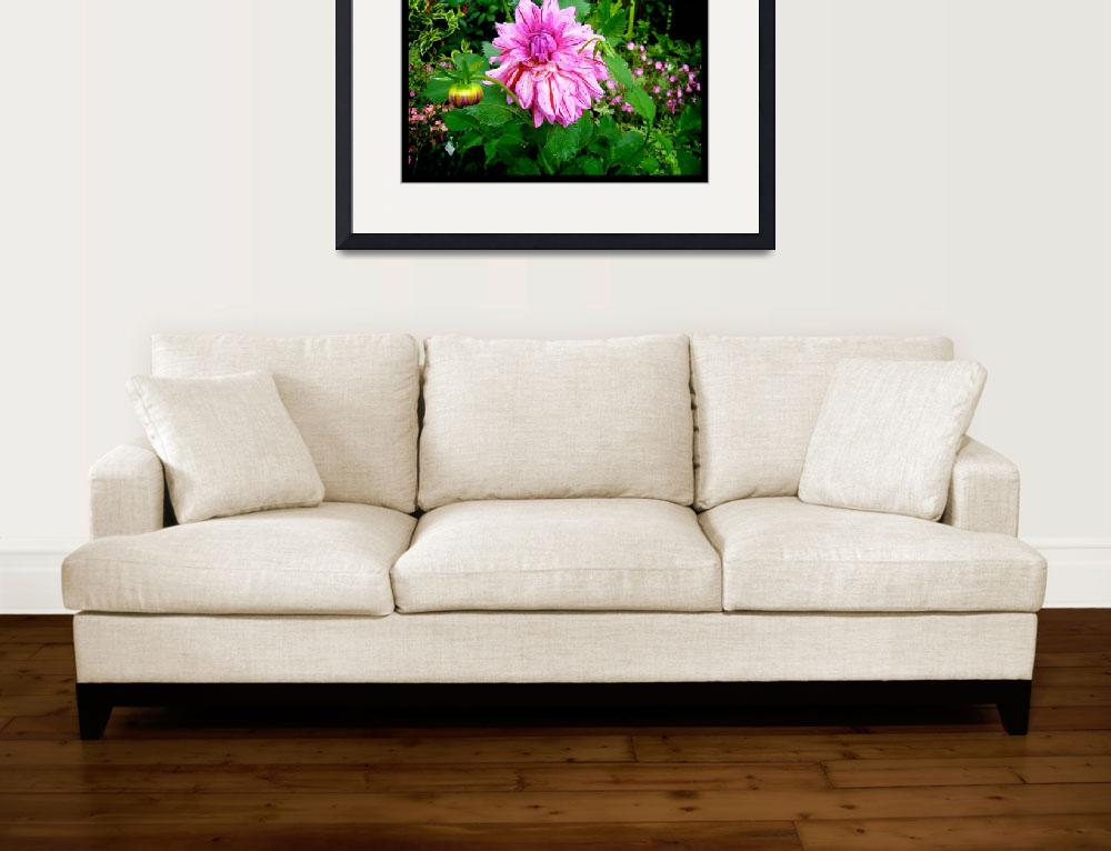 """""""Naik Michel Photography - Hortensia House Garden P&quot  (2010) by naikmichel"""