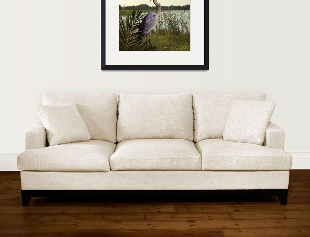 """""""Great Blue Heron in the Bulrushes""""  (2010) by spadecaller"""