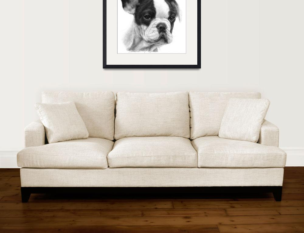 """French Bulldog""  (2006) by sdonley"