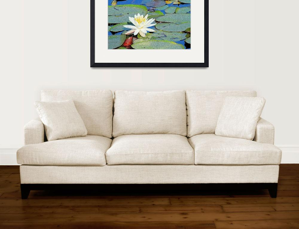 """Summer Water Lily&quot  (2011) by karolsstuff"
