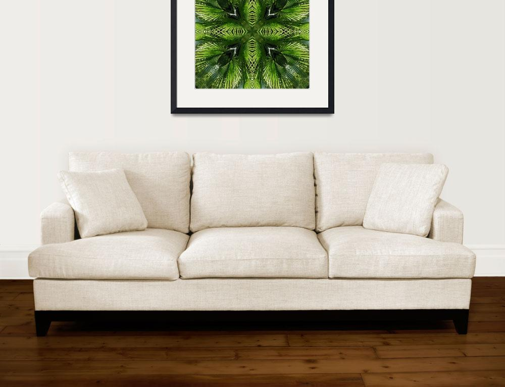 """Palm Frond Kaleidoscope 1&quot  (2010) by Francesa"