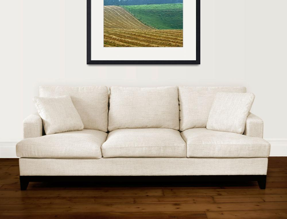 """""""Peaceful Rural Abstract&quot  (1999) by DMHImages"""