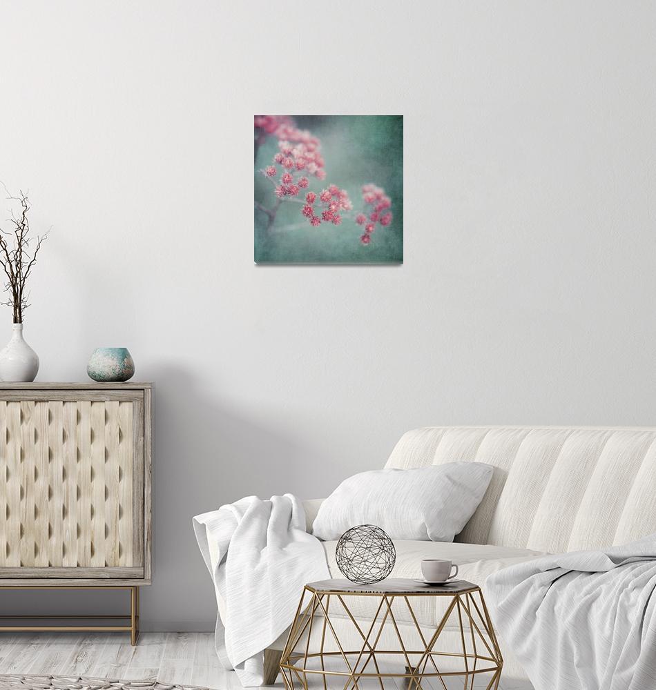 """""""pink beauty""""  by Piri"""
