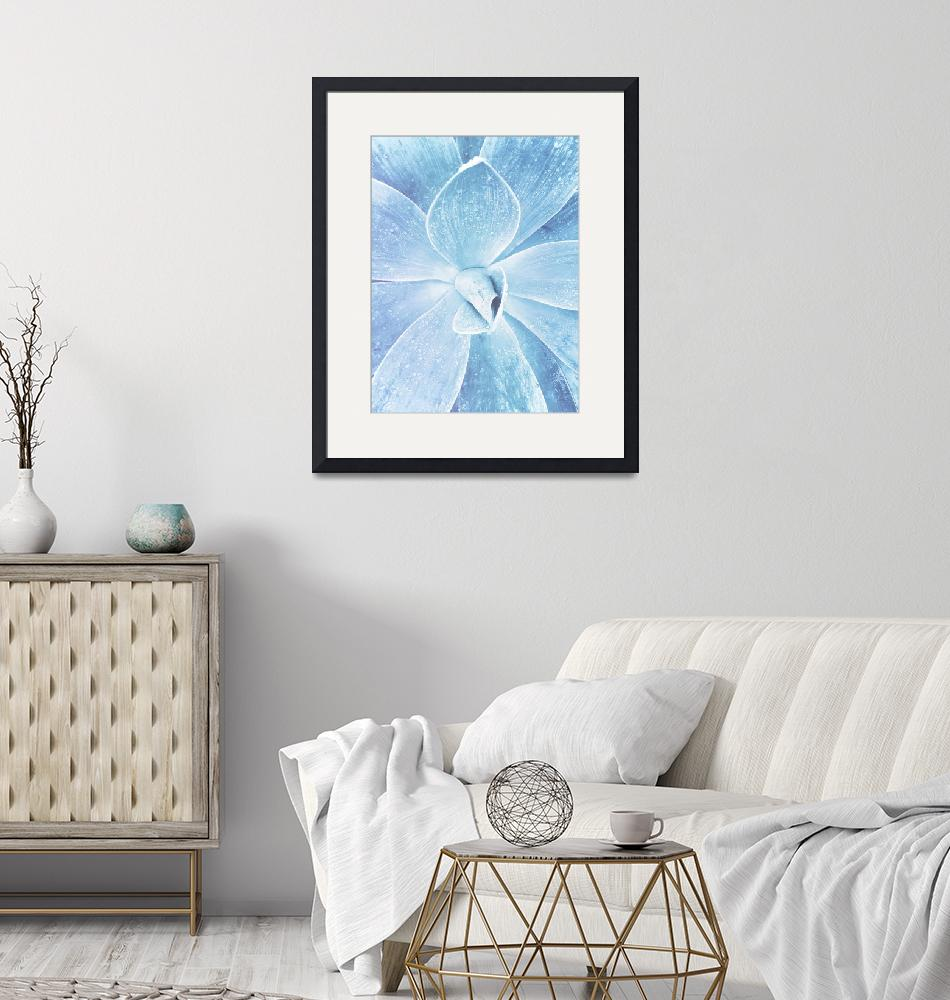 """""""Blue Succulent""""  (2018) by moderntropical"""
