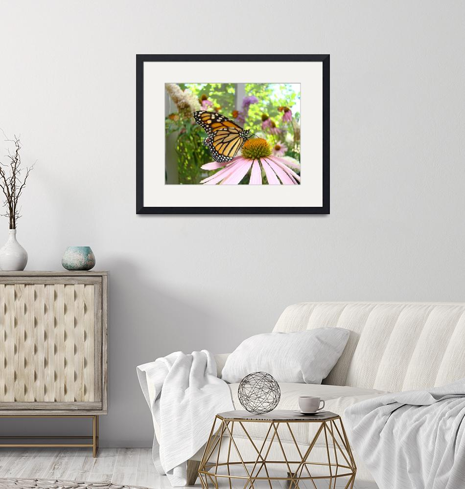 """Monarch Butterfly Art Prints Pink Cone Flower""  (2014) by BasleeTroutman"