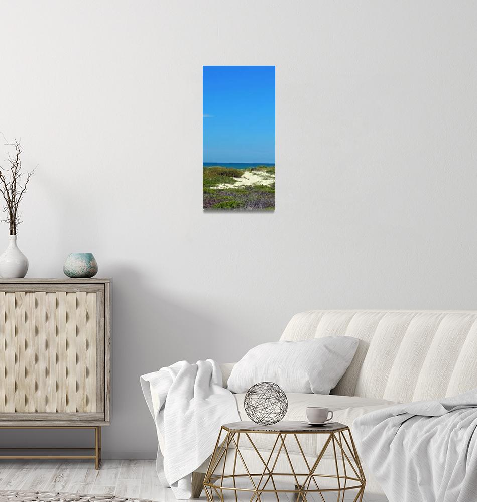 """""""10x20padre island beach2""""  by cindybettinger"""