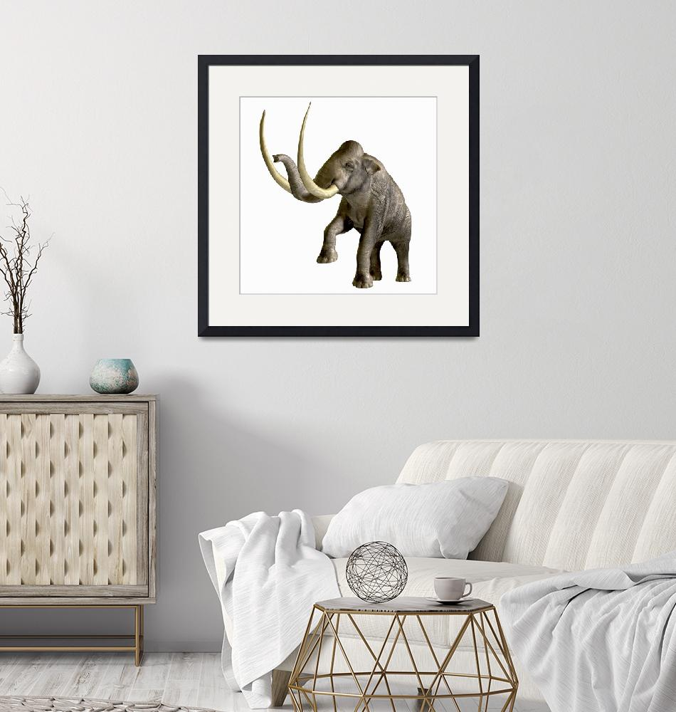 """""""The Columbian Mammoth""""  by stocktrekimages"""