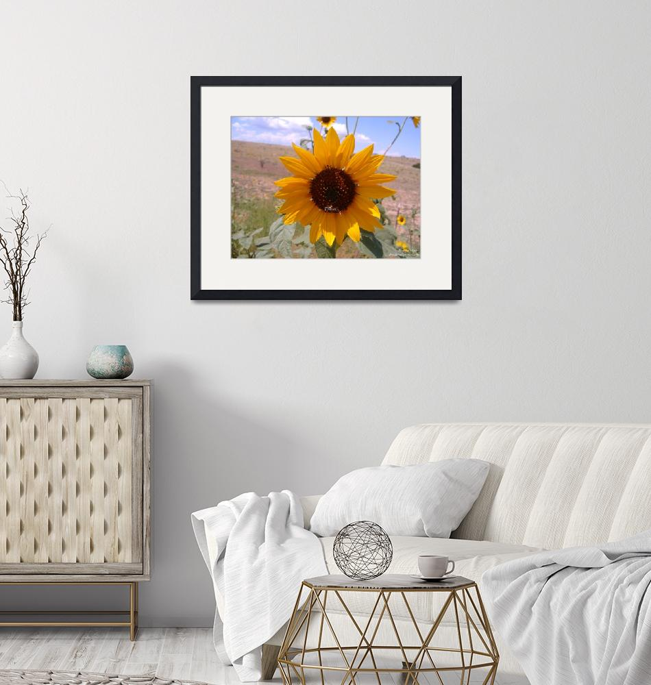 """""""Sunflower with Bee""""  by phoenixwaller"""