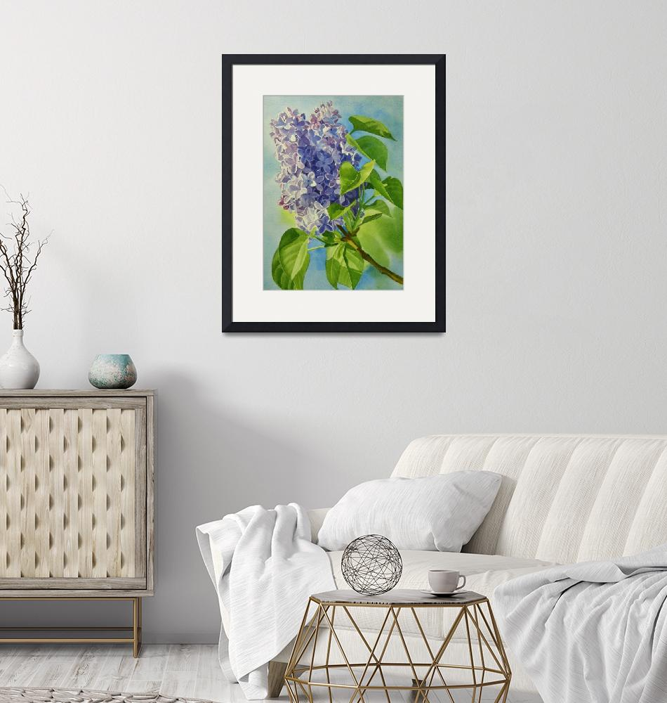 """""""Blue and Lavender Lilacs""""  (2009) by Pacific-NW-Watercolors"""