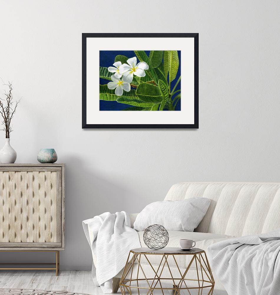 """""""White Plumeria Blossoms with Blue Background""""  (2012) by Pacific-NW-Watercolors"""