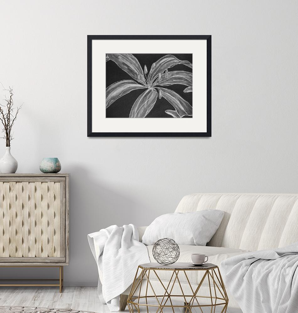 """""""Behold the Lily in B&W""""  (1999) by LMStudios"""