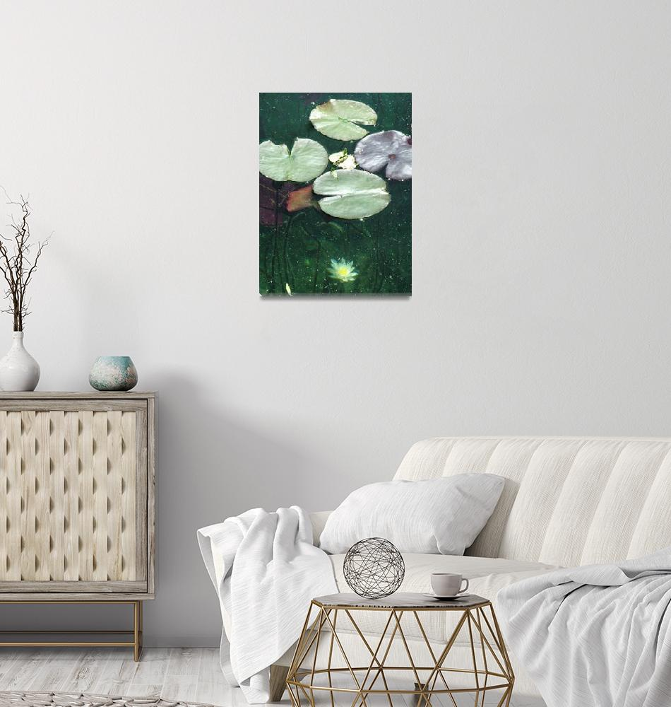 """""""Lake Bled Lilypad""""  (2005) by DonnaCorless"""