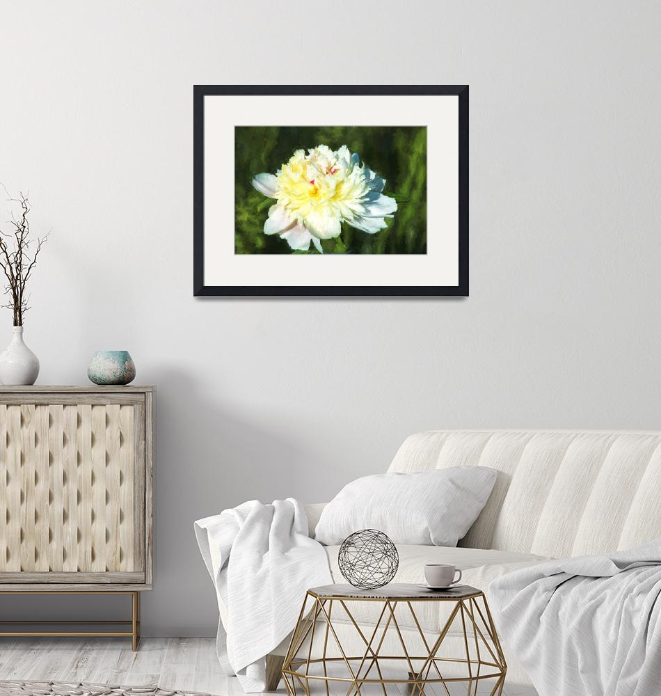 """""""Afternoon Peony""""  (2015) by AlexButler"""